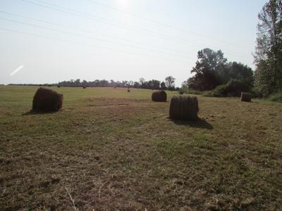 3678 DECHERD ESTILL RD, Decherd, TN 37324 - Photo 2
