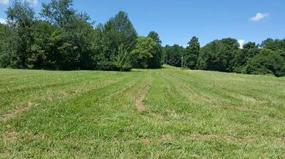 4385 PEYTONSVILLE TRINITY RD, Franklin, TN 37064 - Photo 1