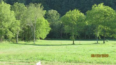 10 JOHNSON HOLLOW RD, Watertown, TN 37184 - Photo 1