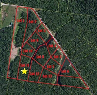 11 HANGING ROCK DR, Altamont, TN 37301 - Photo 2