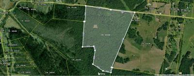 0 HOWELL RD, Mount Pleasant, TN 38474 - Photo 2
