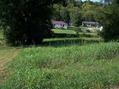 0 RILEY HL RD, Pulaski, TN 38478 - Photo 2