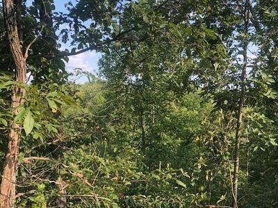 115 CLEAR WATER LN, Wilder, TN 38589 - Photo 1