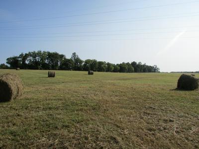 3678 DECHERD ESTILL RD, Decherd, TN 37324 - Photo 1