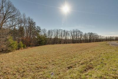 0 NEW LAWRENCEBURG HWY, Mount Pleasant, TN 38474 - Photo 2