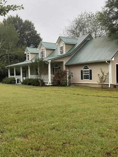 4111 HIGHWAY 43 N, Ethridge, TN 38456 - Photo 2