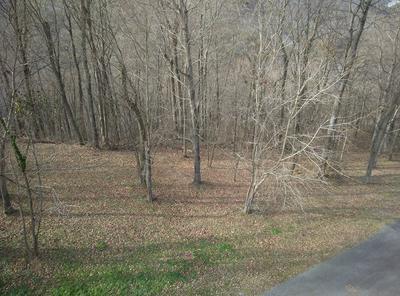 83 DAVIDSON RD, Smithville, TN 37166 - Photo 1