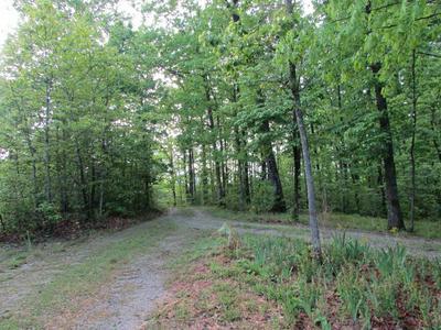 2213 DEER RUN RD, Altamont, TN 37301 - Photo 1