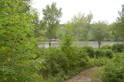 1120 STRIKE KING DR, Cedar Grove, TN 38321 - Photo 2