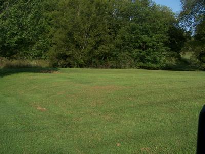 0 WILLIAM WHITWORTH RD, Pulaski, TN 38478 - Photo 1