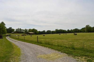 8292 LEWISBURG HWY, Cornersville, TN 37047 - Photo 1