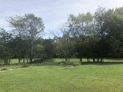 0 NEW ZION RD, Christiana, TN 37037 - Photo 1