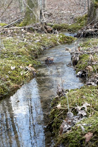 0 BOULDER LAKE DRIVE, Coalmont, TN 37313 - Photo 1