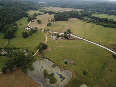 3301 NATURAL BRIDGE RD, Waynesboro, TN 38485 - Photo 2