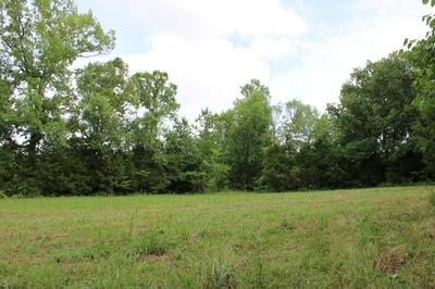 2798 CHERRY CORNER RD, Cornersville, TN 37047 - Photo 2