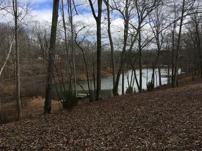 88 PINE LAKE RD, SUMMERTOWN, TN 38483 - Photo 2