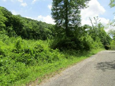 455 SHILOH RD, Crawford, TN 38554 - Photo 2