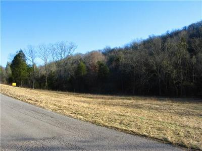 0 SPANKEM RD, Lynchburg, TN 37352 - Photo 1