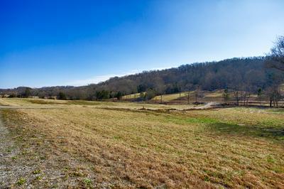 2490 PULASKI HWY, Fayetteville, TN 37334 - Photo 2
