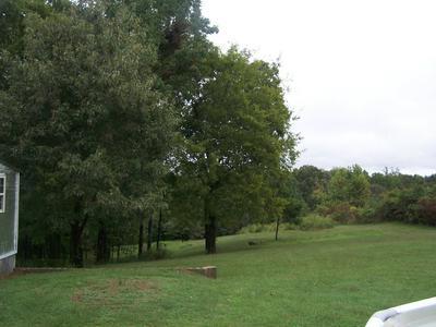 374 STATE LINE RD, Loretto, TN 38469 - Photo 2