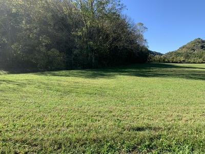 0 COX HOLLOW LN, Whitleyville, TN 38588 - Photo 2