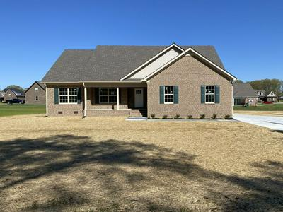 1821 HILLS CHAPEL RD, Manchester, TN 37355 - Photo 1