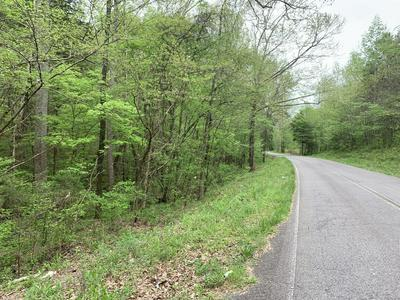 0 CATHEY HOLLOW ROAD, Burns, TN 37029 - Photo 2