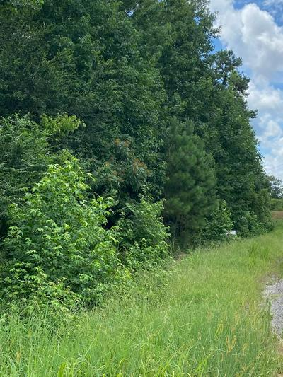 0 SWIFT LN., Scotts Hill, TN 38374 - Photo 1
