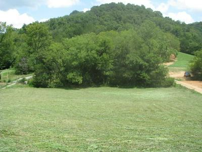0 HAPPY VALLEY RD, Bell Buckle, TN 37020 - Photo 1