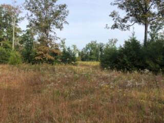 0 SR-56, Coalmont, TN 37313 - Photo 1