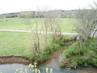 0 CATHEYS CREEK, Hampshire, TN 38461 - Photo 2
