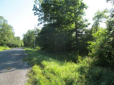 215 RAILROAD BED RD, Summertown, TN 38483 - Photo 2