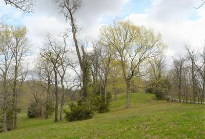 0 CARL FOX RD, Cornersville, TN 37047 - Photo 2