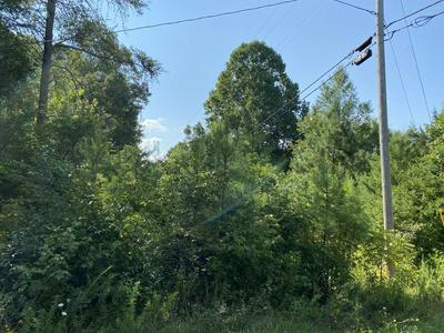 0 JEFFERSON ROAD, Smithville, TN 37166 - Photo 2