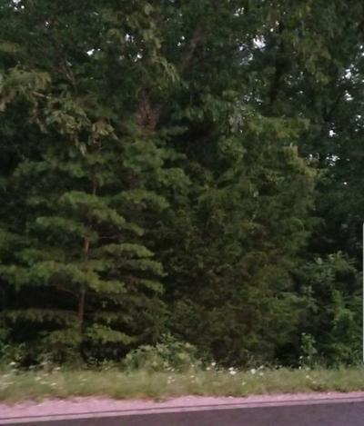 2 BAKER MOUNTAIN RD, Spencer, TN 38585 - Photo 1