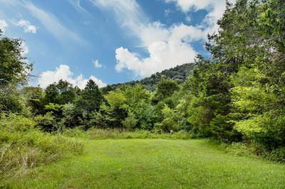 0 HONEY PRONG RD, Hartsville, TN 37074 - Photo 1