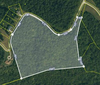 0 FOX HILL RD, Baxter, TN 38544 - Photo 1
