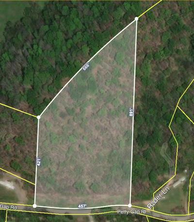 0 PETTY GAP ROAD, Woodbury, TN 37190 - Photo 1