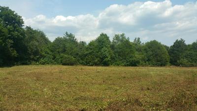 1 JOHN WINDROW RD, Eagleville, TN 37060 - Photo 1