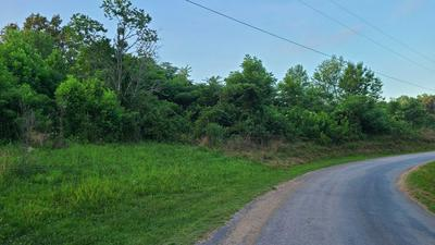 3931 PARCHCORN HOLLOW RD, Woodbury, TN 37190 - Photo 1