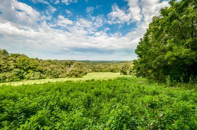 0 DRY CREEK RD E, Mount Pleasant, TN 38474 - Photo 1