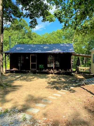 170 DEER RUN LOOP, Altamont, TN 37301 - Photo 2