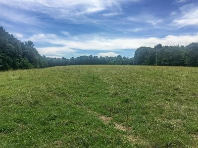 267 WEAKLEY LOOP, Ethridge, TN 38456 - Photo 2