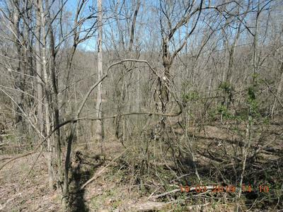 0 TOMMY PRICE RD LOT 8, Lynchburg, TN 37352 - Photo 2