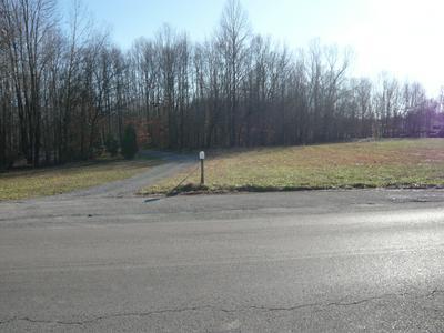 0 CHESTNUT RIDGE RD, Lynchburg, TN 37352 - Photo 2