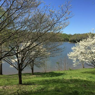 0 HUFFMAN PARK LOT 100, Lynchburg, TN 37352 - Photo 2