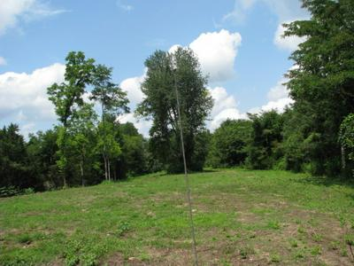 0 HAPPY VALLEY RD, Bell Buckle, TN 37020 - Photo 2