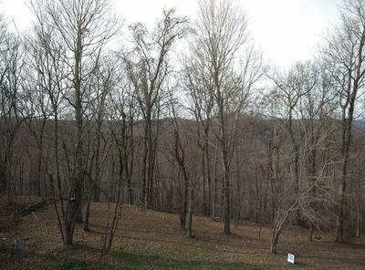 83 DAVIDSON RD, Smithville, TN 37166 - Photo 2