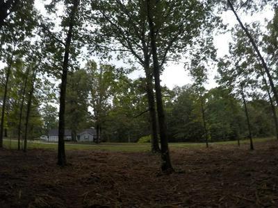 0 WINDWOOD LN, Hohenwald, TN 38462 - Photo 1