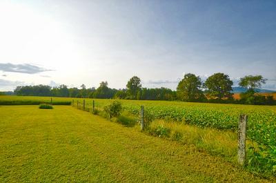 3459 SHORT MOUNTAIN RD, Woodbury, TN 37190 - Photo 2